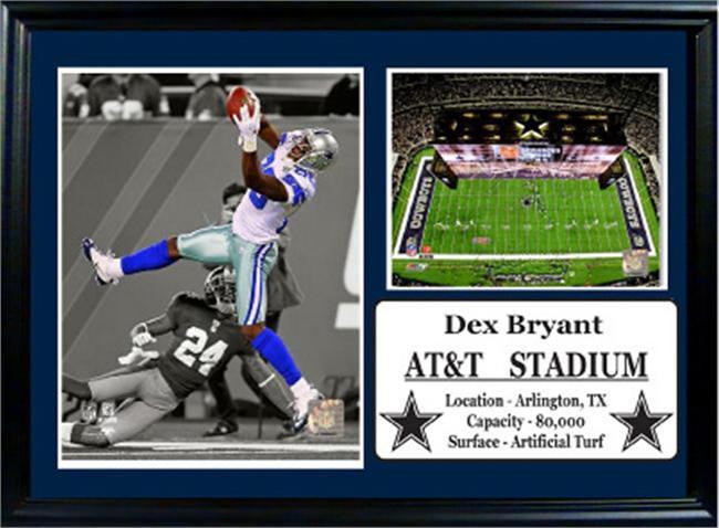 Dallas Cowboys 12 X 18 Dez Bryant Photo Stat Frame