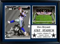 "Dallas Cowboys 12"" x 18"" Dez Bryant Photo Stat Frame"