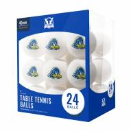 Delaware Blue Hens 24 Count Ping Pong Balls