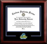 Delaware Blue Hens Spirit Diploma Frame
