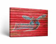 Delaware State Hornets Weathered Canvas Wall Art
