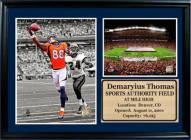 "Denver Broncos 12"" x 18"" Demaryius Thomas Photo Stat Frame"