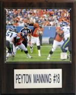"Denver Broncos Peyton Manning 12 x 15"" Player Plaque"
