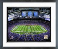 Detroit Lions Ford Field Framed Photo