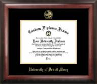 Detroit Mercy Titans Gold Embossed Diploma Frame