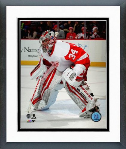 Detroit Red Wings Petr Mrazek Action Framed Photo