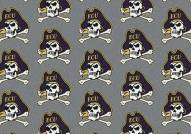 East Carolina Pirates College Repeat Area Rug