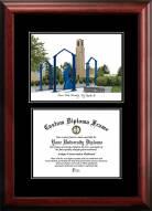 Ferris State Bulldogs Diplomate Diploma Frame