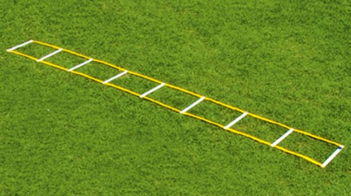 Fisher 12' Single Speed Ladder