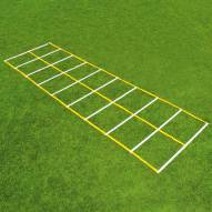 Fisher 15' Double Speed Ladder