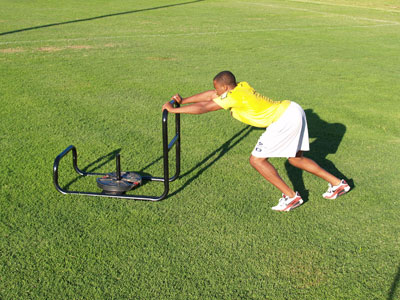"""Fisher 36"""" Push / Pull Sled"""