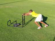 "Fisher 36"" Push / Pull Sled"