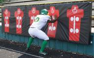 Fisher 4' x 16' Football Player Punch Pads