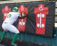 Fisher 4' x 8' Football Player Punch Pads