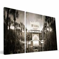 "Florida Gators 24"" x 48"" Stadium Canvas Print"