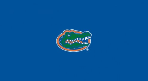 Florida Gators College Team Logo Billiard Cloth