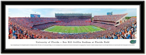 Florida Gators Framed Stadium Print