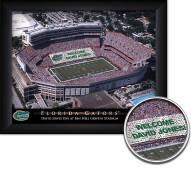 Florida Gators 11 x 14 Personalized Framed Stadium Print