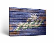 Florida Gulf Coast Eagles Weathered Canvas Wall Art