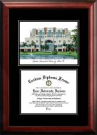 Florida International Golden Panthers Diplomate Diploma Frame
