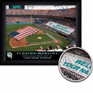 Miami Marlins 11 x 14 Personalized Framed Stadium Print