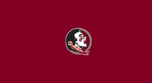 Florida State Seminoles College Team Logo Billiard Cloth