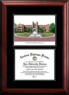 Florida State Seminoles Diplomate Diploma Frame