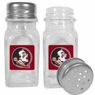 Florida State Seminoles Graphics Salt & Pepper Shaker