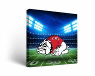 Gardner-Webb Bulldogs Stadium Canvas Wall Art