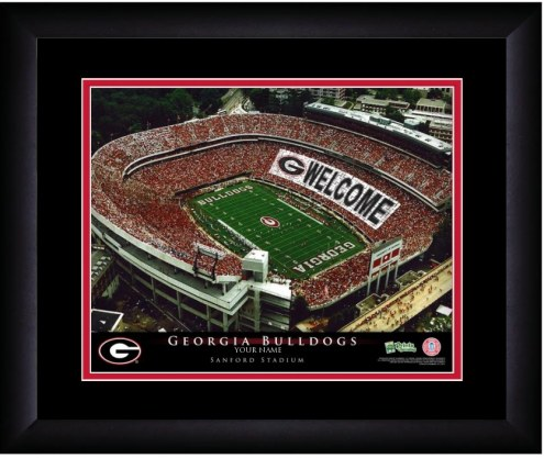 Georgia Bulldogs 13 x 16 Personalized Framed Stadium Print