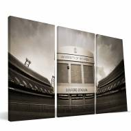 "Georgia Bulldogs 24"" x 48"" Stadium Canvas Print"