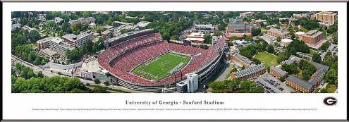 Georgia Bulldogs Aerial Standard Framed Panorama
