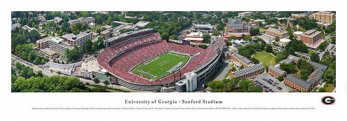 Georgia Bulldogs Aerial Unframed Panorama