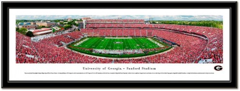 Georgia Bulldogs Framed Stadium Print