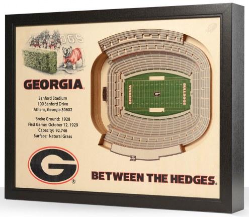 Georgia Bulldogs Stadium View Wall Art