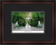 University of Georgia Academic Framed Lithograph