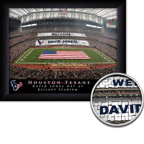 Houston Texans 11 x 14 Personalized Framed Stadium Print
