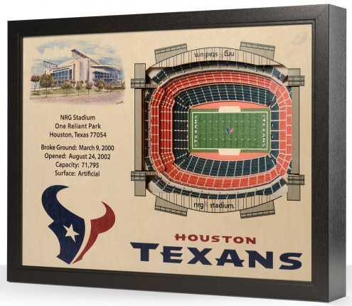 Houston Texans Stadium View Wall Art