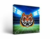 Idaho State Bengals Stadium Canvas Wall Art