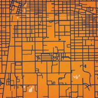 Illinois Fighting Illini Campus Map Print