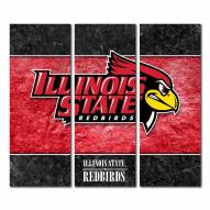 Illinois State Redbirds Triptych Double Border Canvas Wall Art