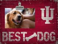 Indiana Hoosiers Best Dog Clip Frame