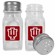 Indiana Hoosiers Graphics Salt & Pepper Shaker