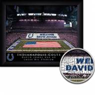 Indianapolis Colts 11 x 14 Personalized Framed Stadium Print