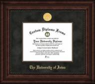 Iowa Hawkeyes Executive Diploma Frame