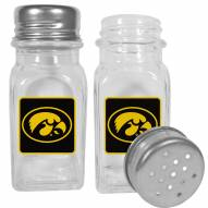 Iowa Hawkeyes Graphics Salt & Pepper Shaker