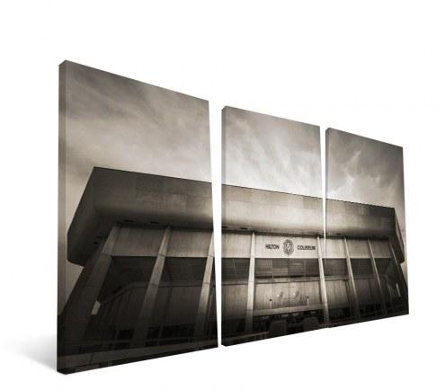 "Iowa State Cyclones 24"" x 48"" Stadium Canvas Print"