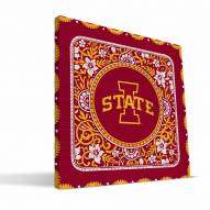 Iowa State Cyclones Eclectic Canvas Print