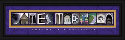 James Madison Dukes Campus Letter Art