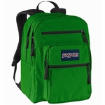 JanSport Backpacks and Bags